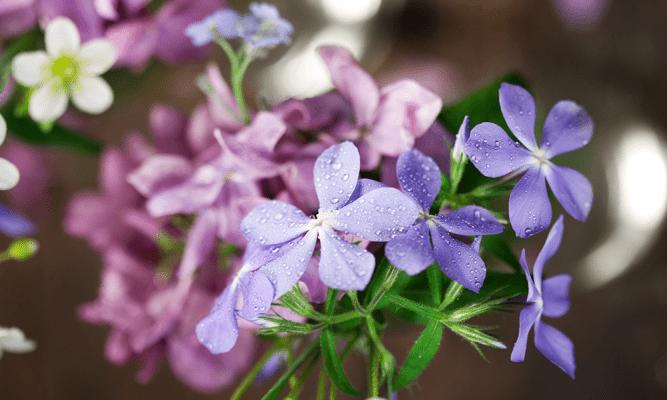 como escolher flores artificiais