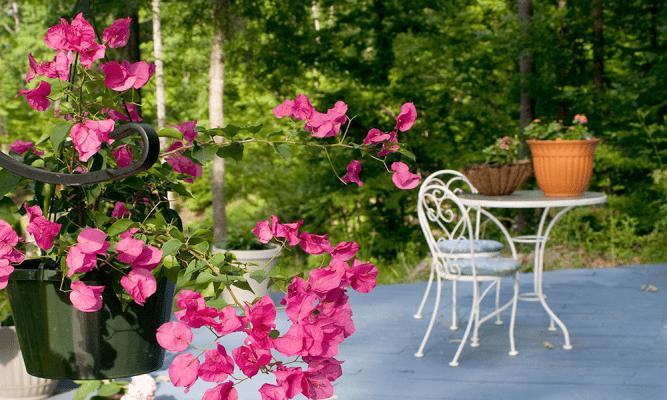 flores na decoracao