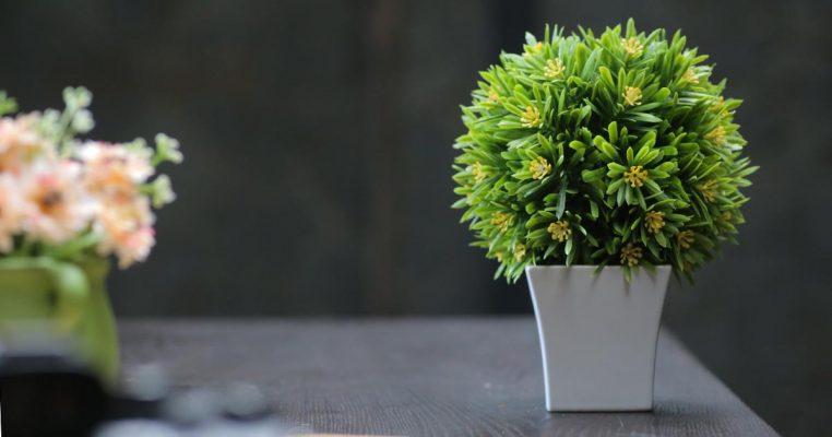 vasos e plantas artificiais