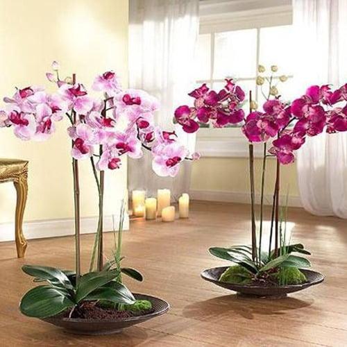 Arranjo de orquídeas artificiais vermelhas