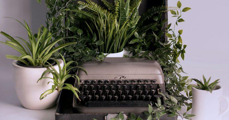 Plantas artificiais realistas - Crysmax