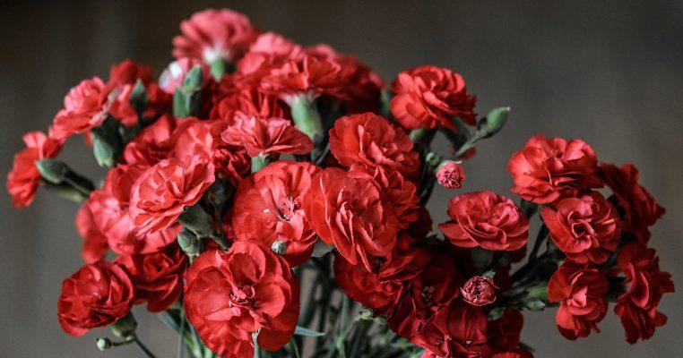 Como lavar flores artificiais - Crysmax