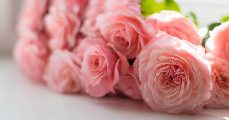 Flores artificiais que parecem naturais - Crysmax
