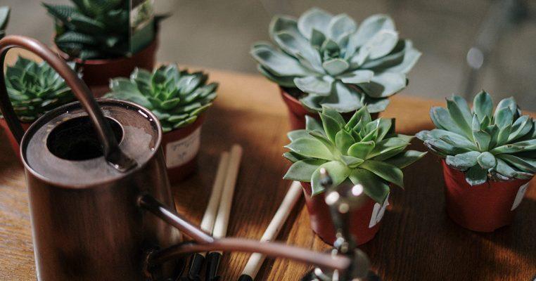 Vasinhos de plantas artificiais - Crysmax