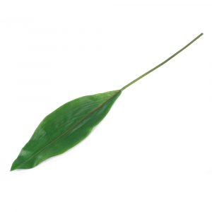 Haste de Folha 72cm Artificial Verde para Decoração