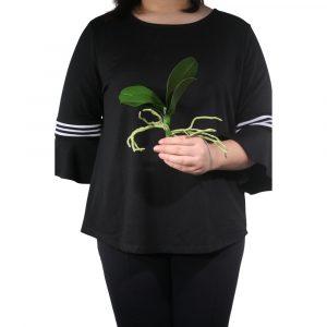 Folha de Orquídea 22cm c/raiz de silicone 22cm Artificial
