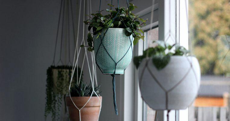 Plantas artificiais pendentes - Crysmax