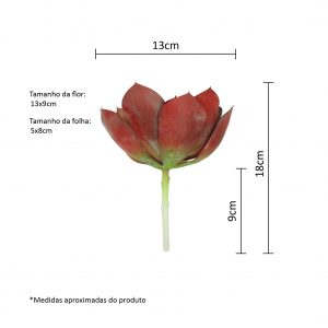 Planta Suculenta Echevéria Artificial