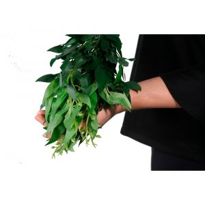 Buquê de Folhas de Bambu Artificial